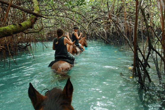 Espiritu Santo Things to Do Vanuatu
