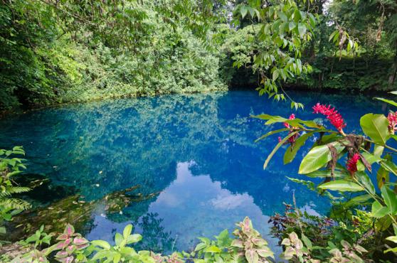 Espiritu Santo's Vanuatu Where to Stay